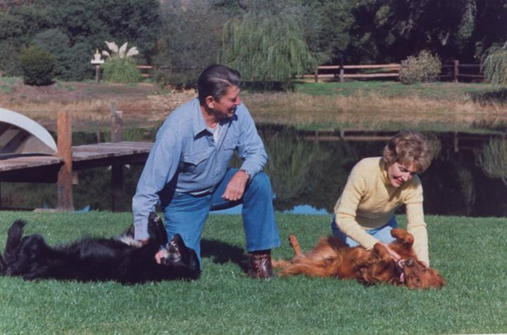 The Reagans play with dogs at their ranch in 1982.