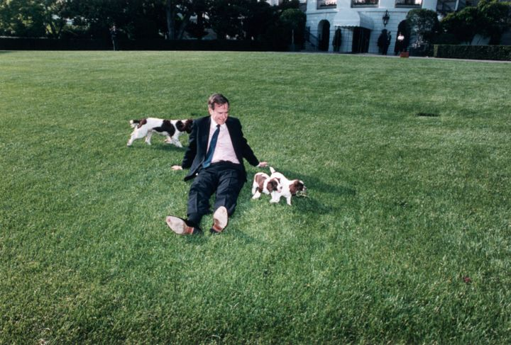 Bush on the White House lawn with Millie and her puppies.