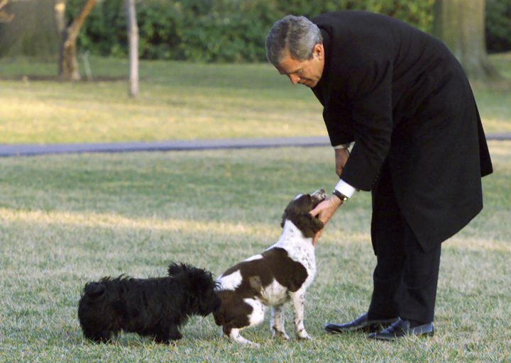 Bush with Spot and Barney at the White House in 2001.