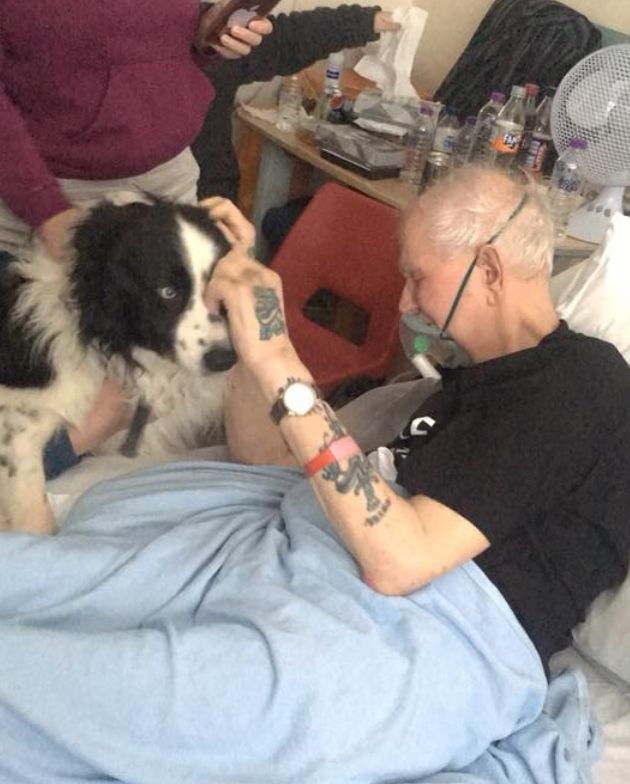 Peter Robson was able to see his beloved border collie Shep one last time.