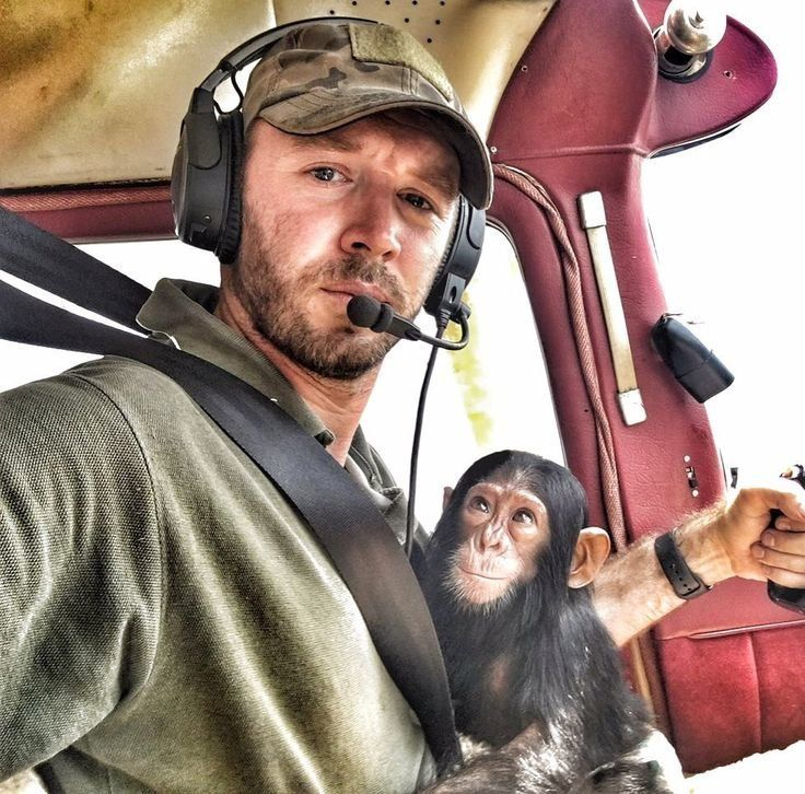Orphan Chimp In Viral Video Broke Rescue Pilot's