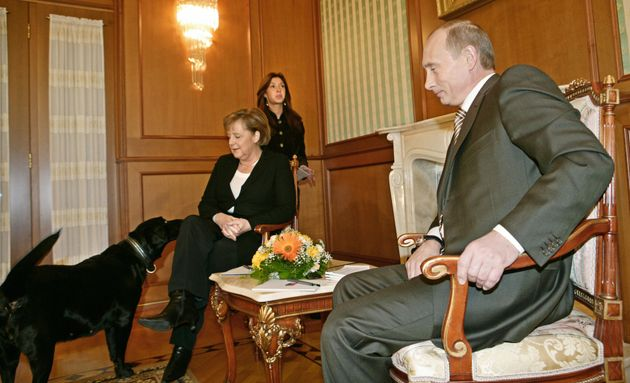 Vladimir Putin had his pet Labrador Koni greet Angela Merkel even though it was well known that Merkel...