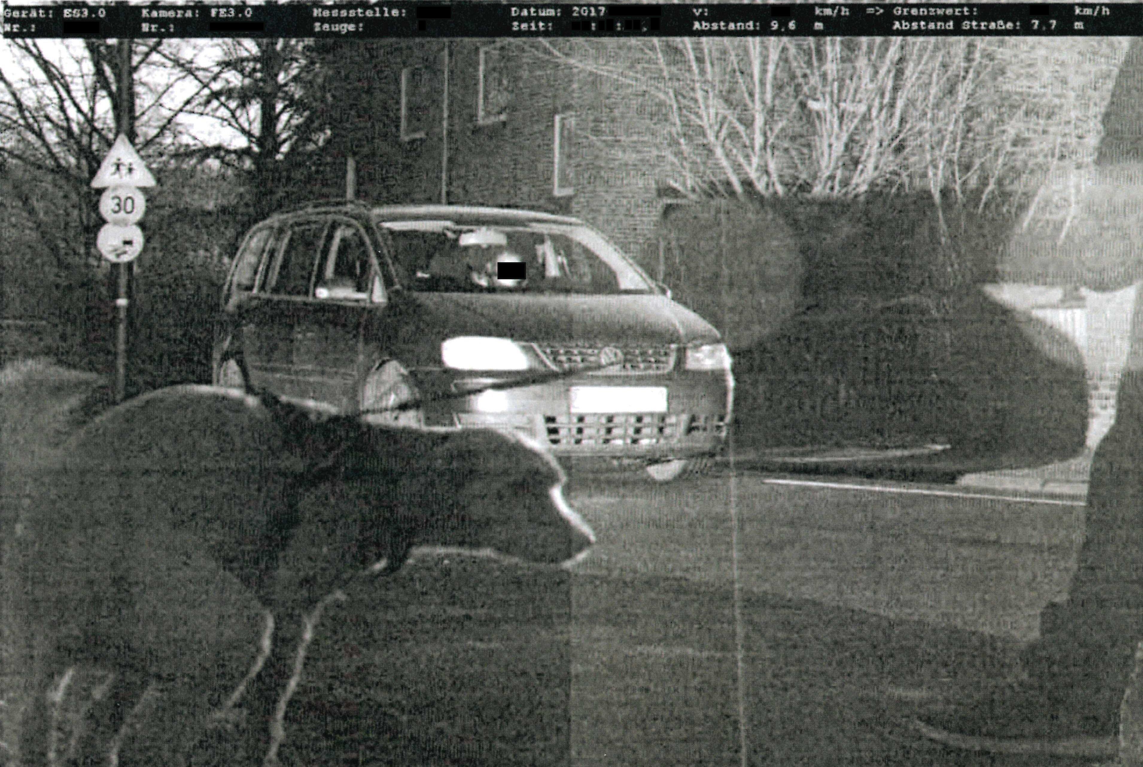 NRW: Polizei blitzt Hund beim Gassi gehen – das steckt dahinter