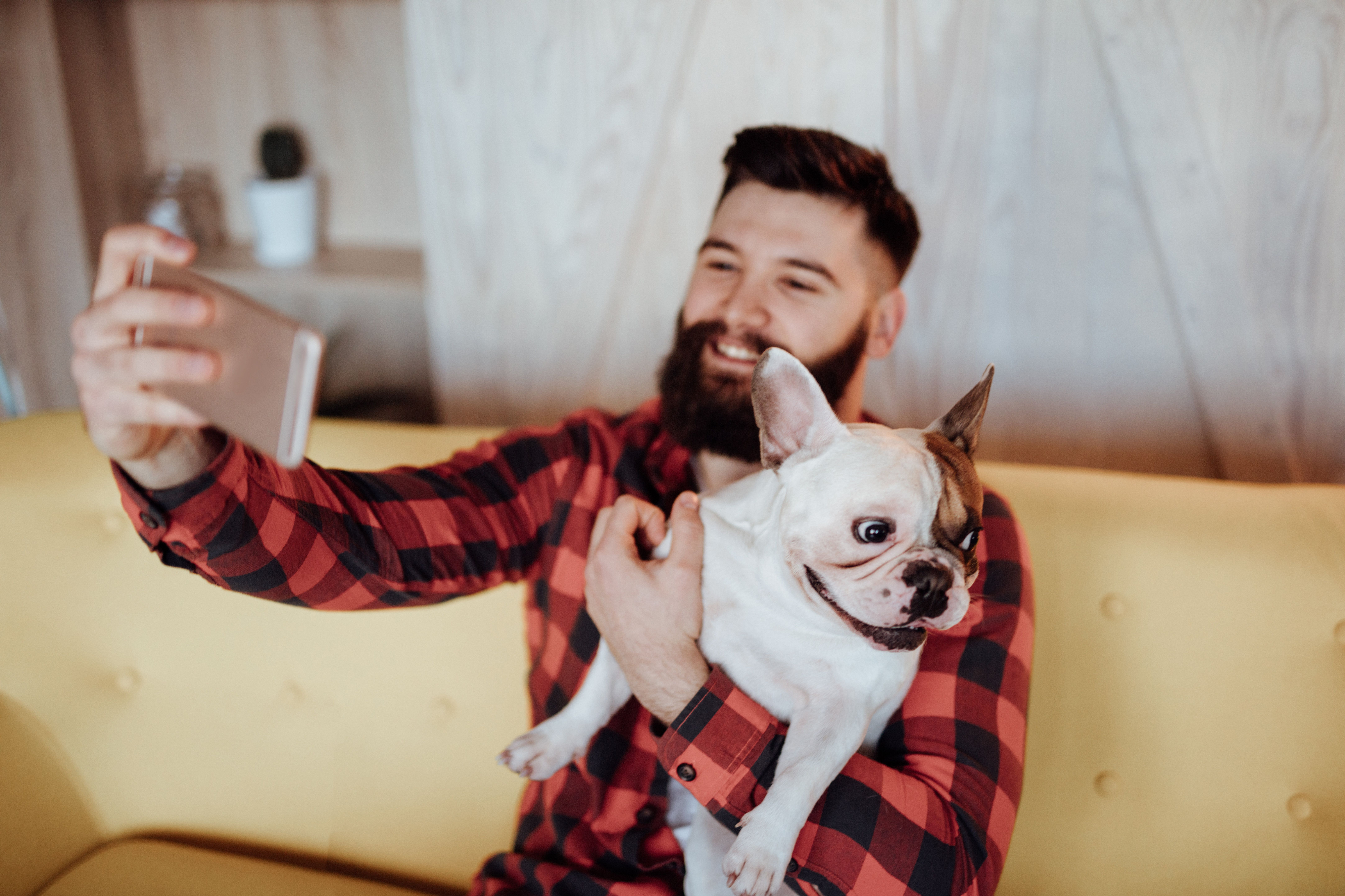 Dogs seem to know when they should pay attention to what you're saying, according to new research.