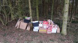 Hatte wohl keine Lust mehr: Paketbote in Oberfranken legt 80 Pakete einfach im Wald