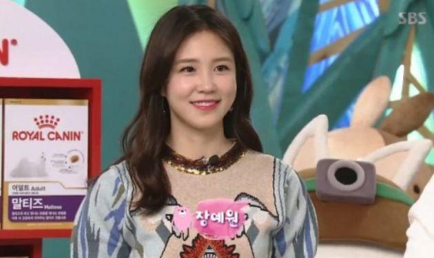 김생민이 17년간 출연했던 SBS '동물농장'의 오늘자