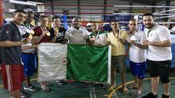 Championnats arabes de boxe: l'Algérie sacrée