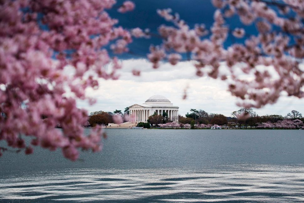 Storm clouds roll in over the Tidal Basin.