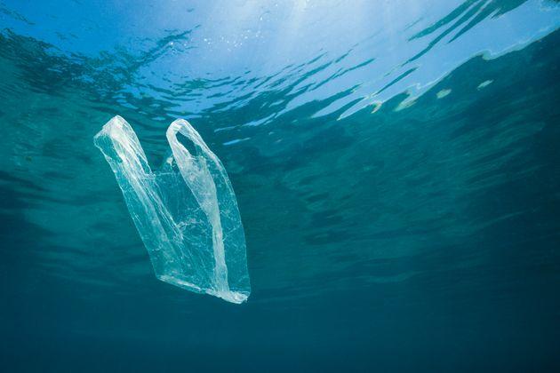 A plastic bag floats in the ocean near