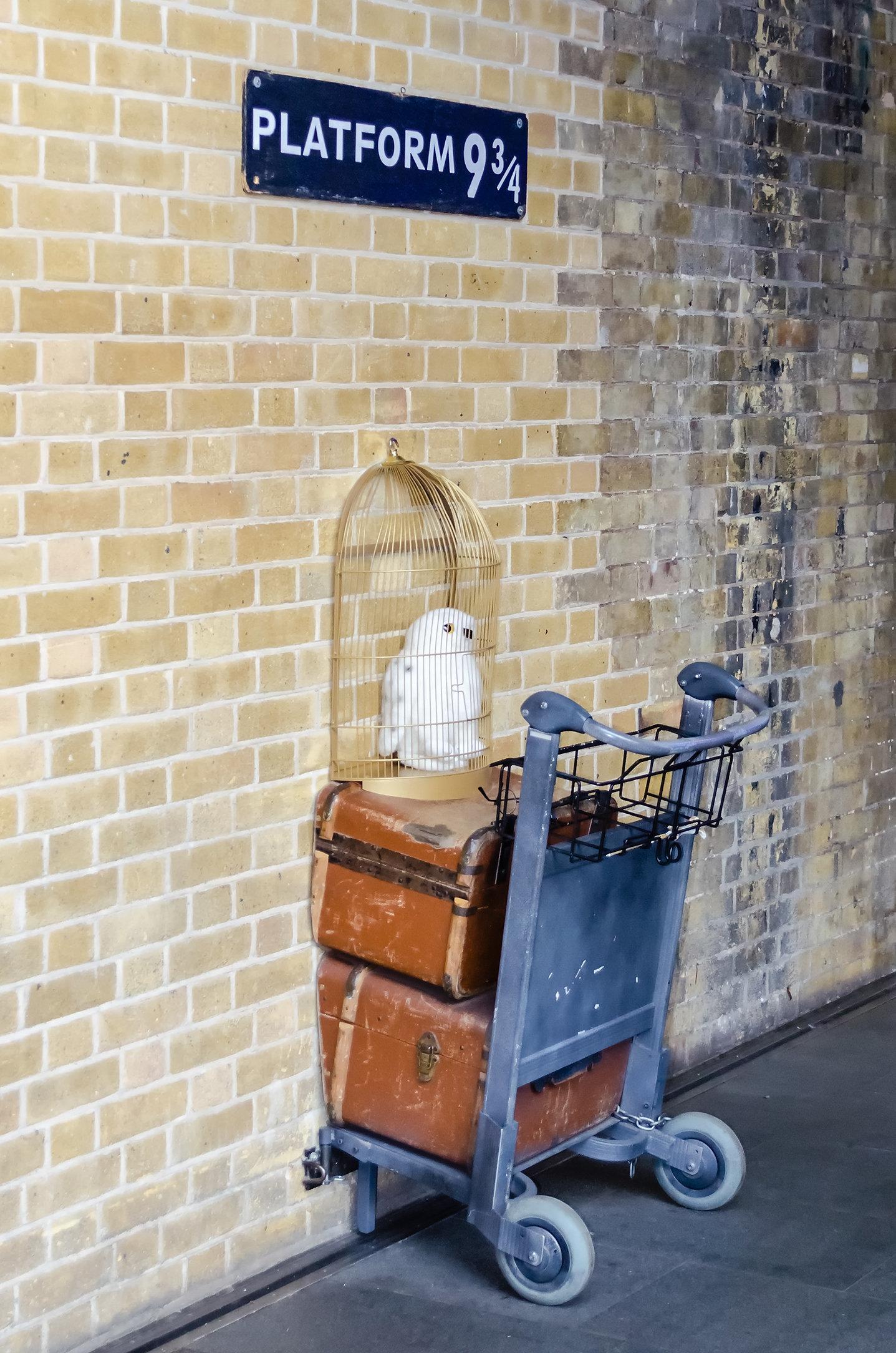 Warum wir alle unseren Kindern Harry Potter vorlesen sollten