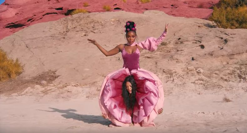 Looks We Love: Janelle Monáe's Labia Trousers In Her 'PYNK' Video
