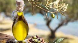 Huile d'olive : Des recettes de plus de 2 milliards de dinars jusqu'à fin octobre