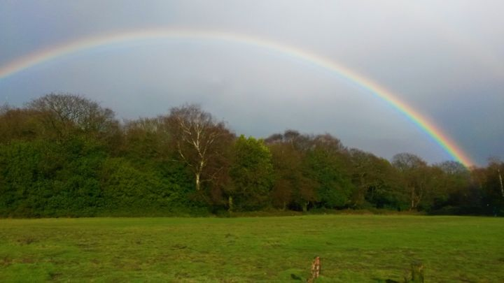 Sutton Park.