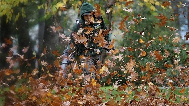 A leaf-blowing landscaper clears a yard in Newton, Massachusetts, where residents have taken to the streets to confront yard