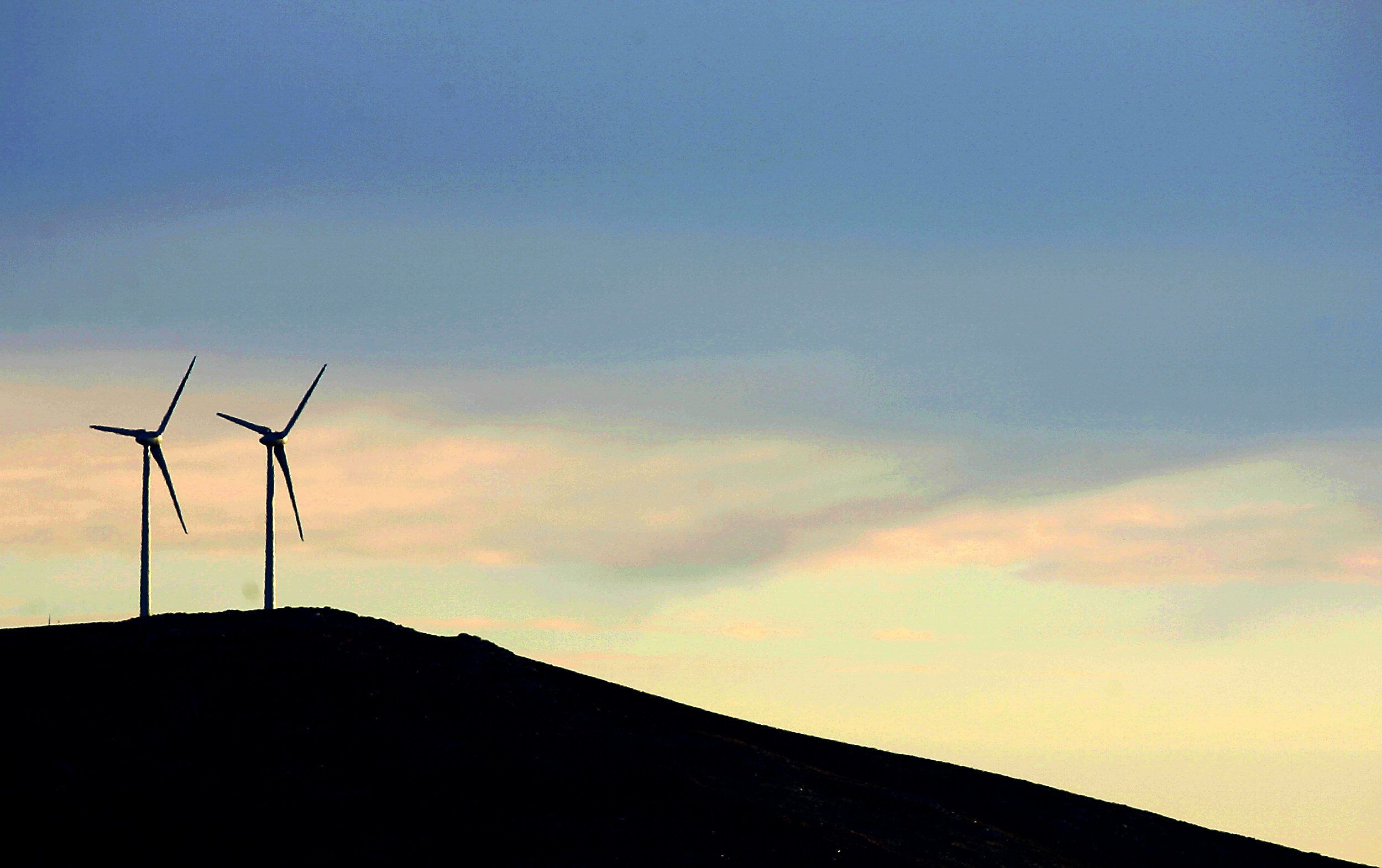 Portugal Produced More Renewable Energy Than It Needed Last