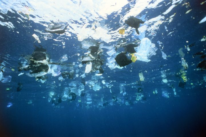 More than 8 million tons of plastic enters the oceans each year. By 2050 it is predicted there will be more plastic than