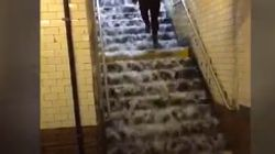 Les escaliers du métro de New York se sont transformés en véritables