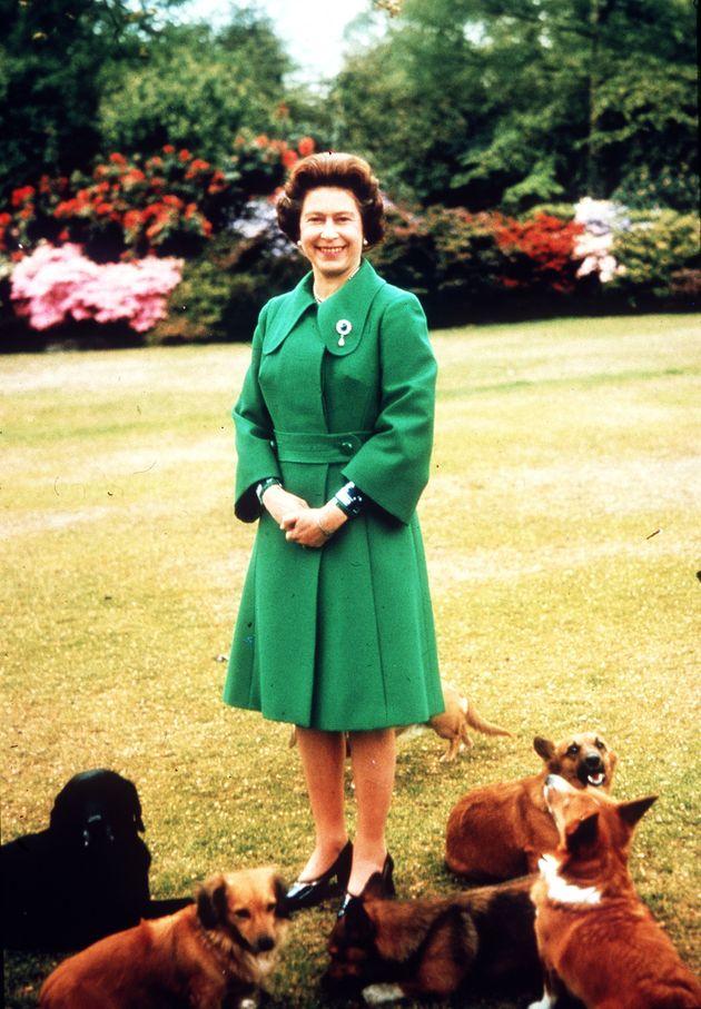 영국 왕실 반려견의 마지막 후손이 세상을