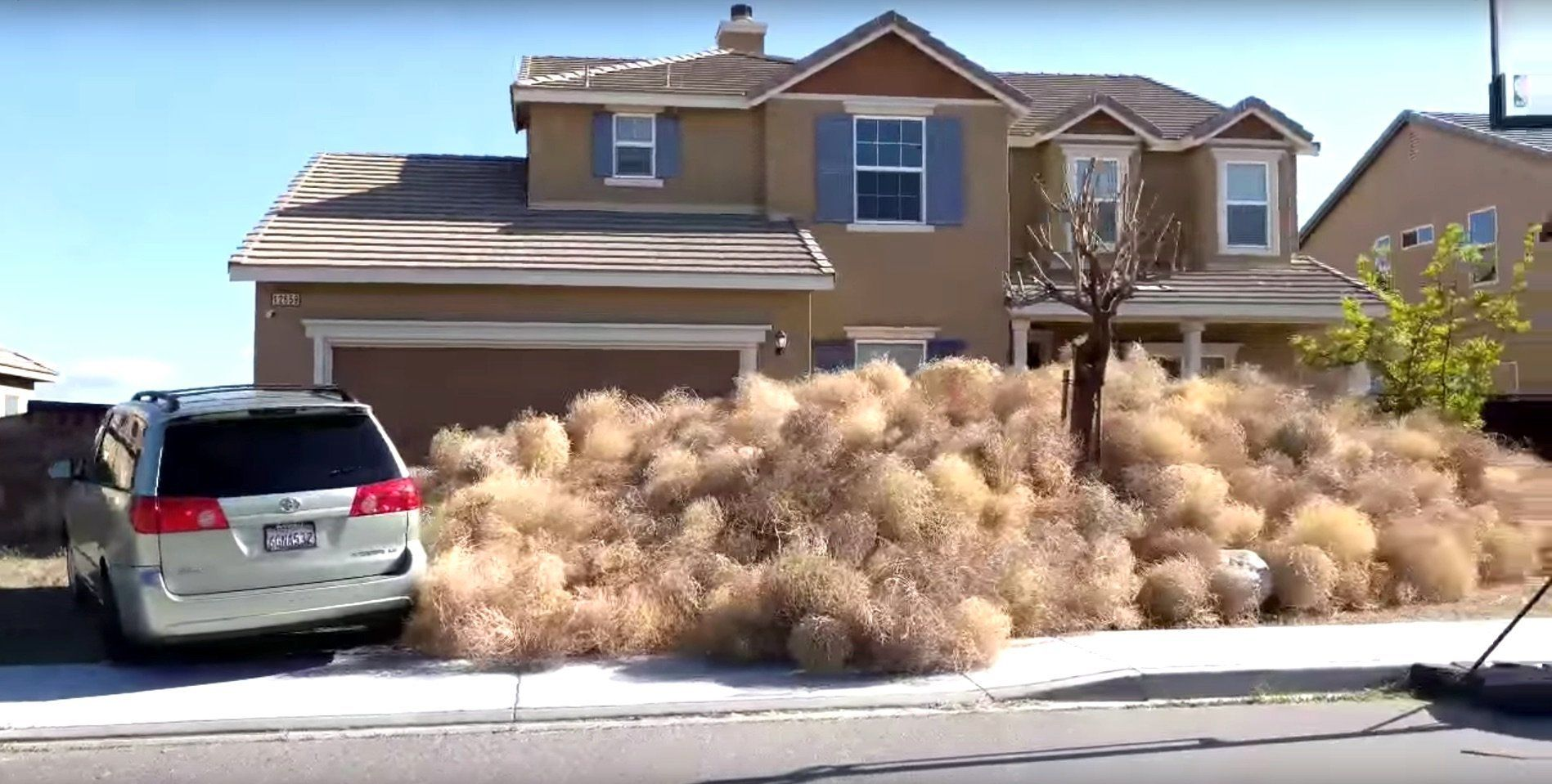Terrifying Tumbleweeds Take Over California Metropolis, Trapping Residents Inside Houses
