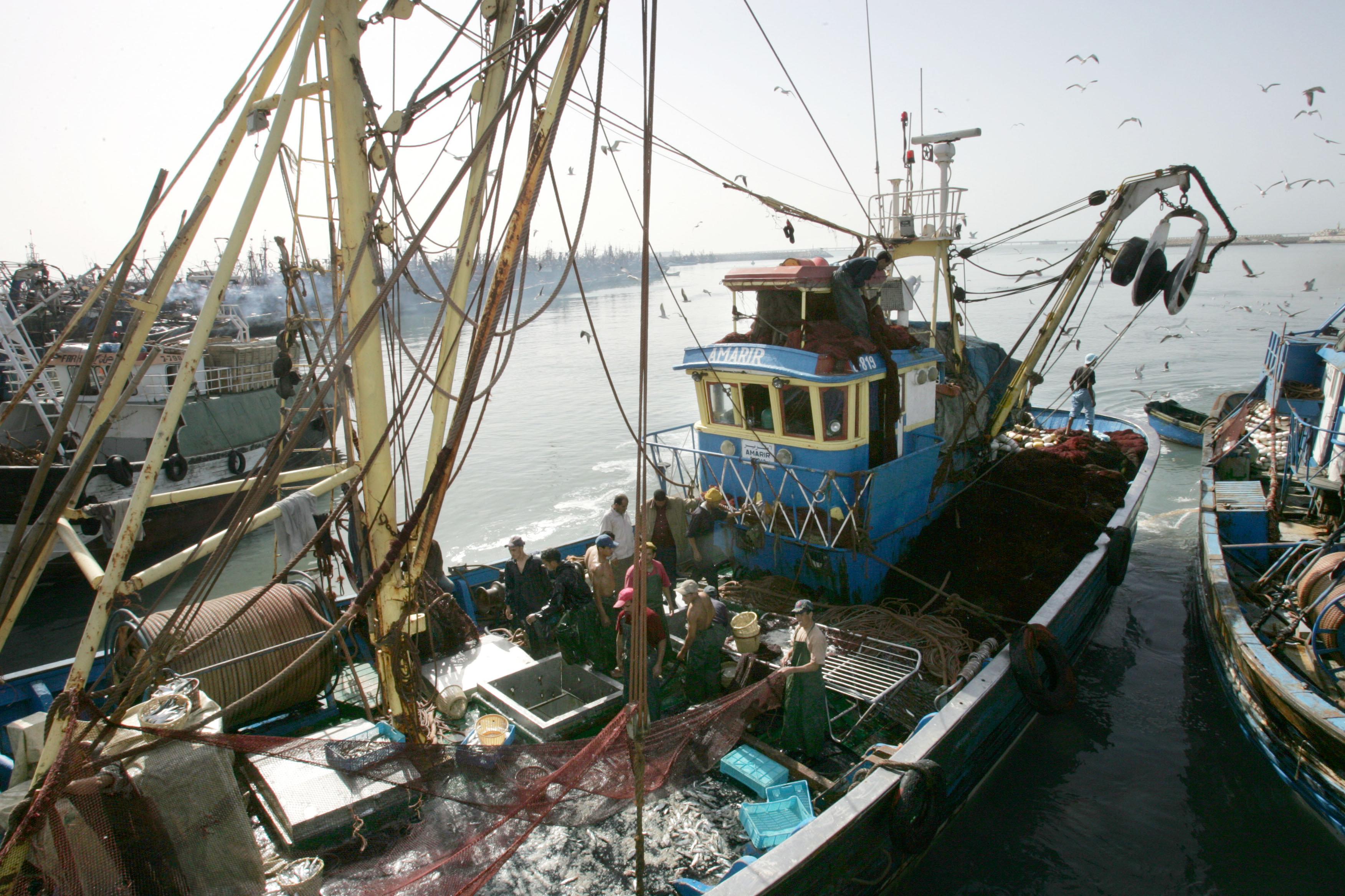 Accord de pêche: Les négociations Maroc-UE reprennent