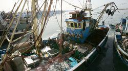 Accord de pêche: Les négociations Maroc-UE