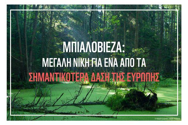 Ράπισμα κατά της Πολωνίας: Σημαντική νίκη για τη φύση στην