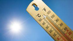 낮 최고 기온이 33.7도까지 오른 곳이
