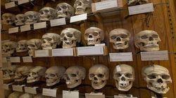 536 crânes de résistants algériens sont toujours au musée de