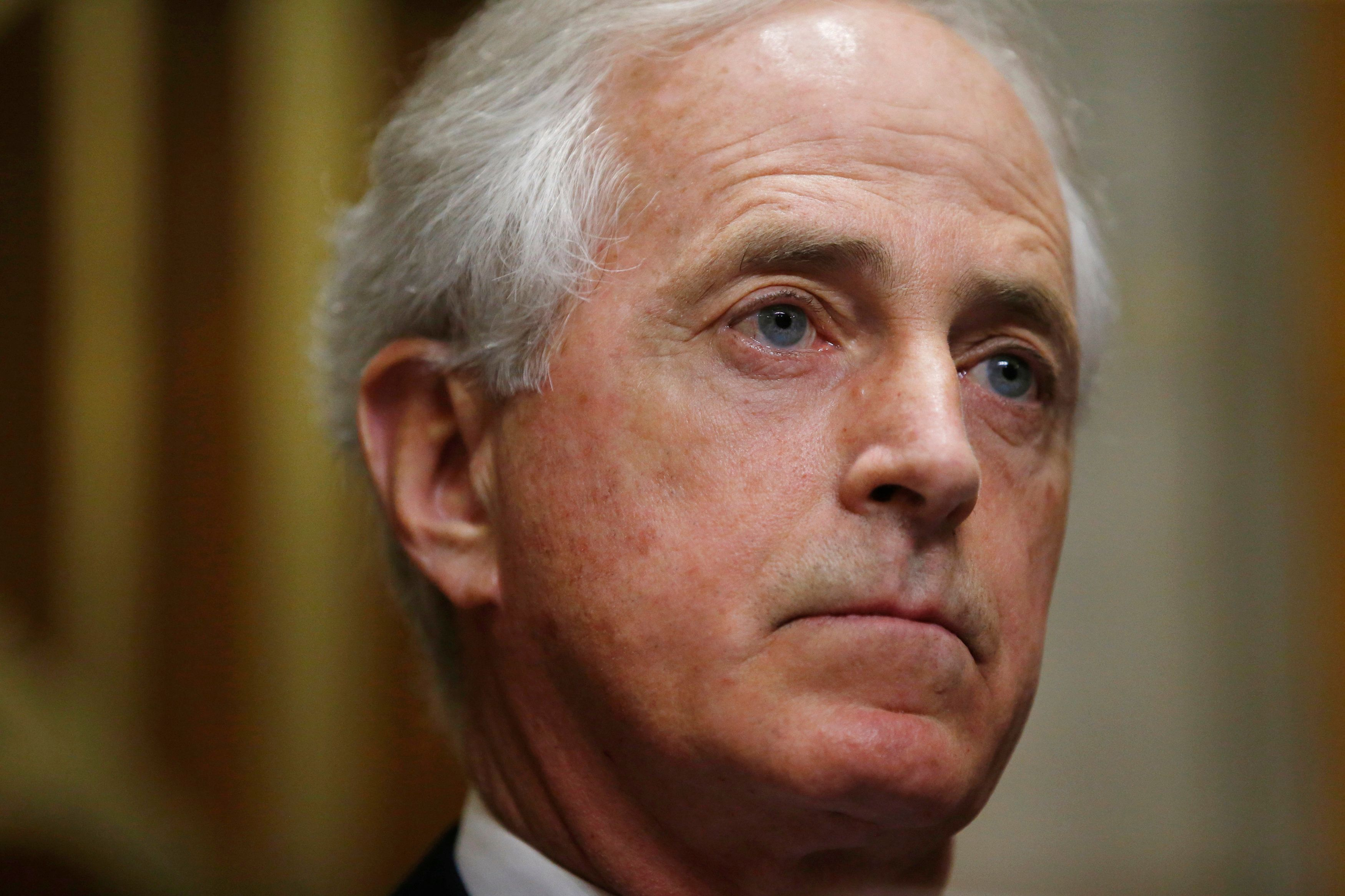 Corker defends praise of Dem running for seat