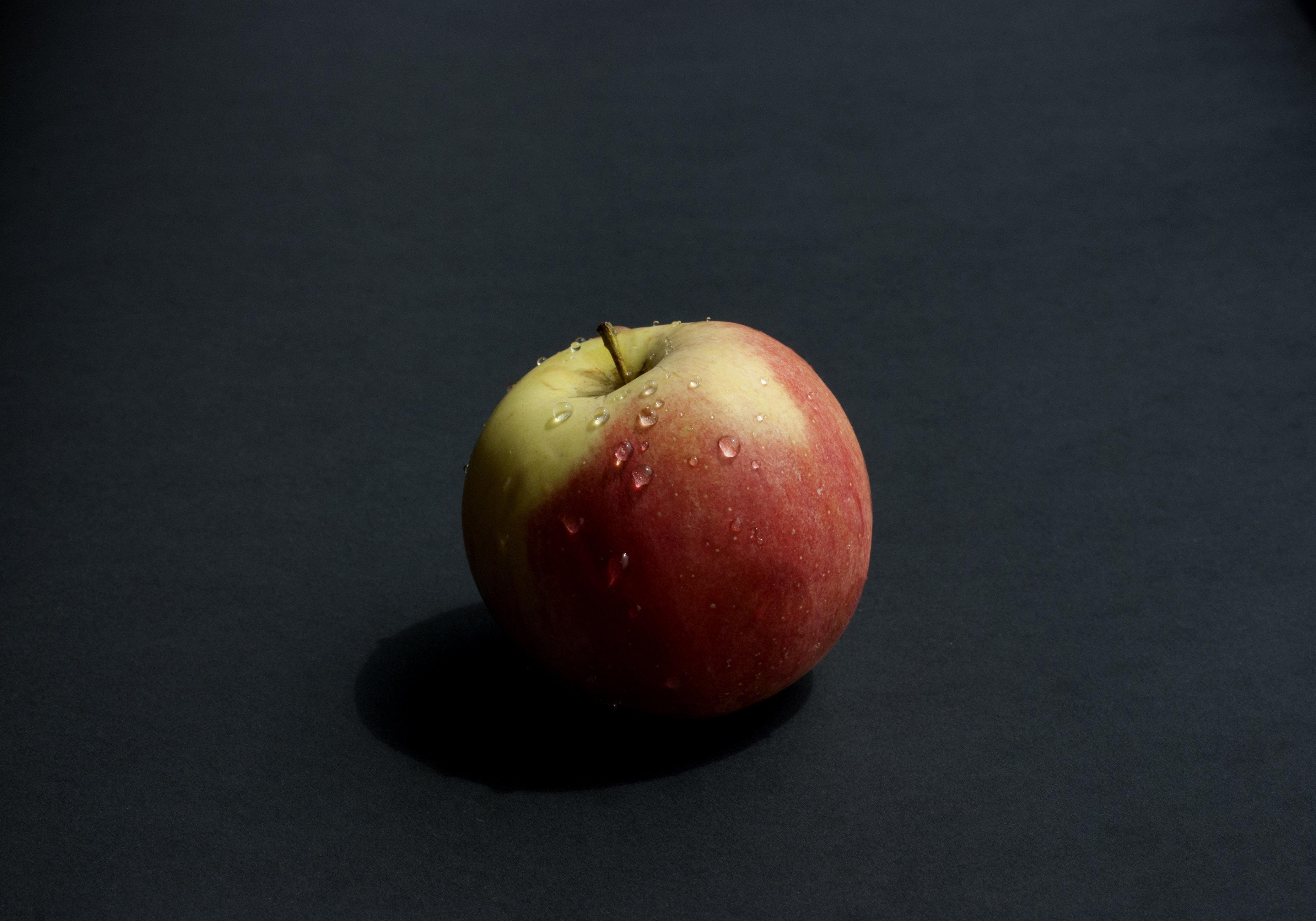 비행기에서 준 공짜 사과를 들고 내린 승객에게 벌어진