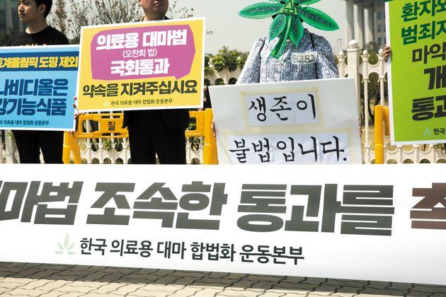 이들이 국회 앞에서 '대마 합법화'를 외친 아주 절실한