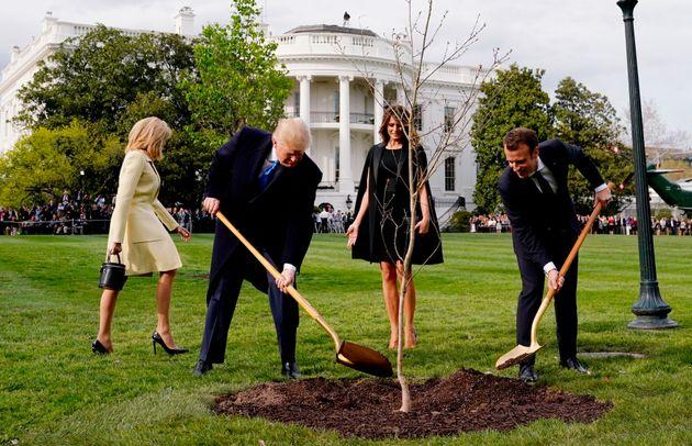 Τι κοινό έχουν Trump - Macron με τις Desperate Housewives και τους Pink Floyd; Η απάντηση σε αυτή την