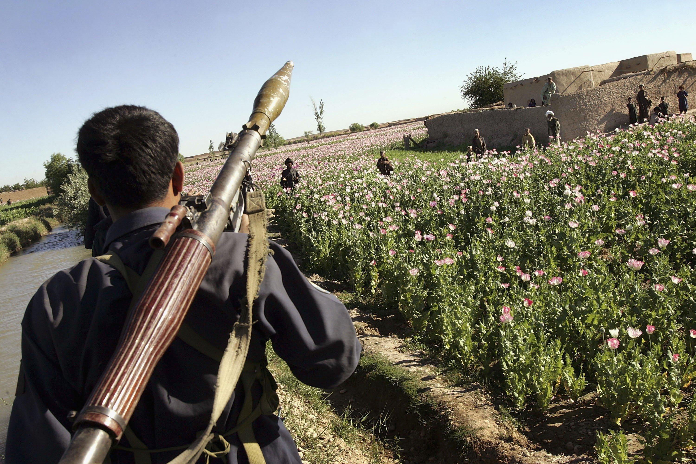 Αφγανιστάν: Οι Ταλιμπάν ανακοίνωσαν την έναρξη της εαρινής τους επιχείρησης με την κωδική ονομασία αλ