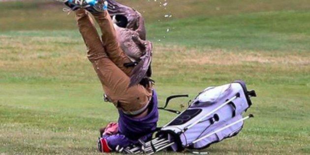 Am Ende erwischte ihn die Gans und der Golfer ging zu