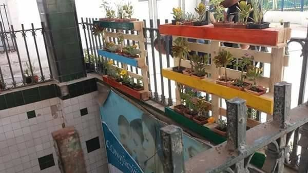 Des pots de fleurs accrochés à la station de métro