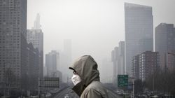 """""""Sind dem Untergang geweiht"""": Renommierter Klimaforscher gibt Menschheit auf"""