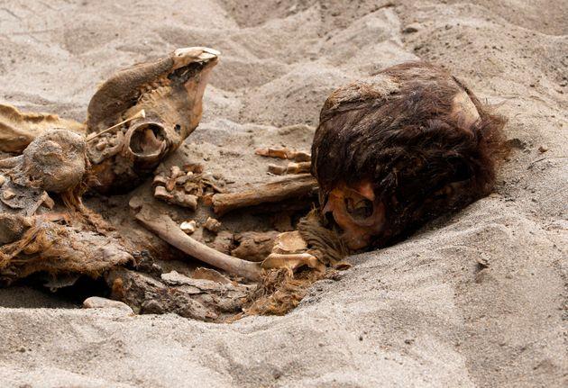 National Geographic: Η μεγαλύτερη μαζική θυσία παιδιών στην
