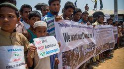 Une délégationdu Conseil de sécurité de l'ONU en visite aux camps des