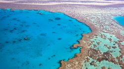Australia Pledges Largest Single Investment To Save Great Barrier