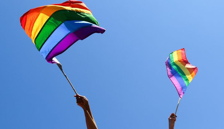People wave rainbow flags.