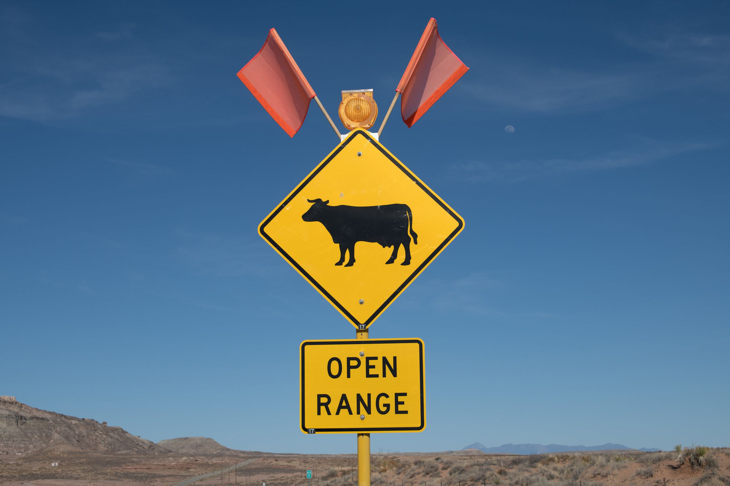 Open range cattle sign near Bluff, Utah.