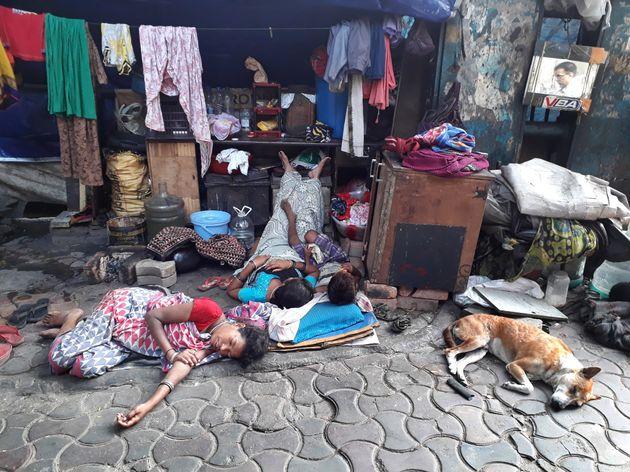 Ινδία: Σκότωσαν 13 αδέσποτα σκυλιά σε αντίποινα για το θάνατο 14