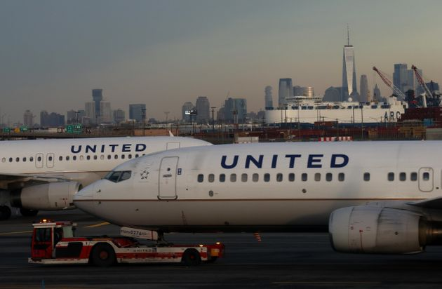 U.S. Airline United Bans Many Breeds From Cargo Holds After Pet