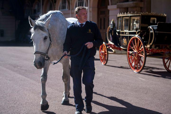 OPhilip Barnard-Brown καθοδηγεί ένα από τα τέσσερα άλογα που θα σύρουν την άμαξα.
