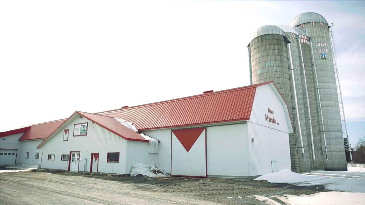 Pascal Thuot's farm in Quebec.