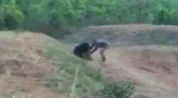 Αρκούδα κατασπάραξε άνδρα που πήγε να βγάλει selfie μαζί