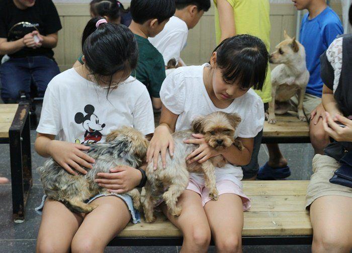 동물자유연대 반려동물복지센터는 여름·겨울방학 때 유아와 초등학생을 위한 교육봉사 프로그램도 1년에 2차례 진행한다.