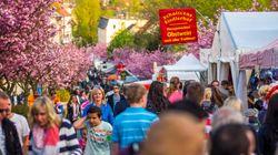 An alle Ellwangen-Empörten: Ihr hättet am Wochenende in Brandenburg sein