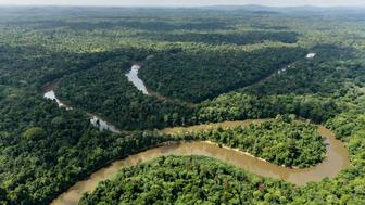 Aerial view of the Mana river in the Amazonian forest, on October 12, 2017, French Guyana. / AFP PHOTO / Jody AMIET        (Photo credit should read JODY AMIET/AFP/Getty Images)