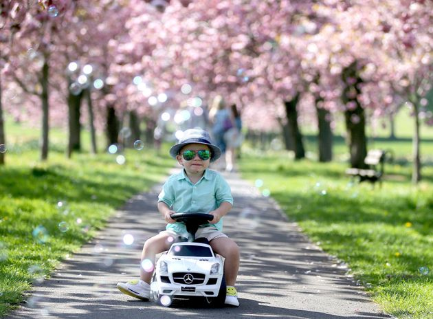 Philip Tokarcyk, aged two, enjoys the sunshine on the Stray in Harrogate.